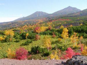 北海道 紅葉 いつ1